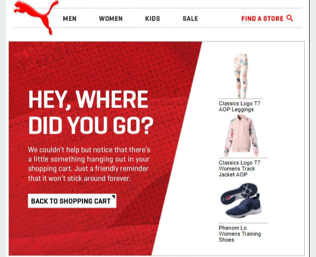 puma cart recovery email